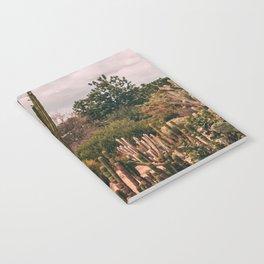 Cactus_0012 Notebook