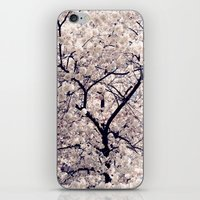 cherry blossom iPhone & iPod Skins featuring Cherry Blossom * by Neon Wildlife