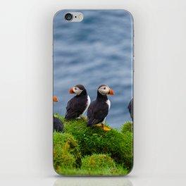 The Puffins of Mykines in the Faroe Islands X iPhone Skin