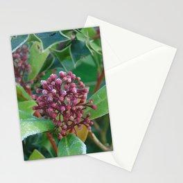 Holly I Love You Stationery Cards