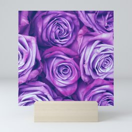 Purple Gothic Roses, Luxurious and Chic Mini Art Print