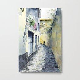 Madeiran Alley Metal Print