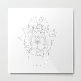 Balanced Metal Print