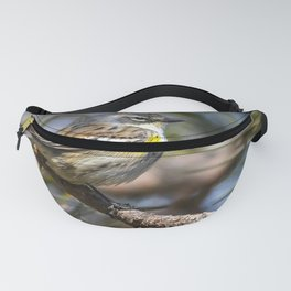 Yellow Rumped Warbler in May Fanny Pack