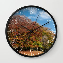 Beautiful and colorful trees in the Canfaito park, Italy Wall Clock
