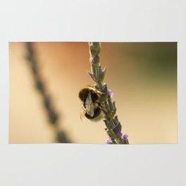 Bee II Rug