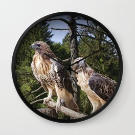 Pair of Red-tail Hawks Wall Clock