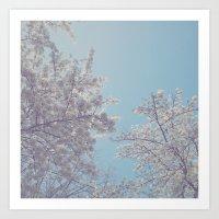 sakura Art Prints featuring Sakura by Luke J