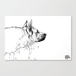 Wet Shepherd Canvas Print