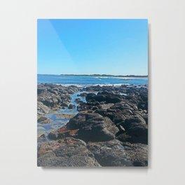 Rockpool Landscape Metal Print