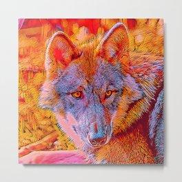 Popular Animals - Wolf Metal Print