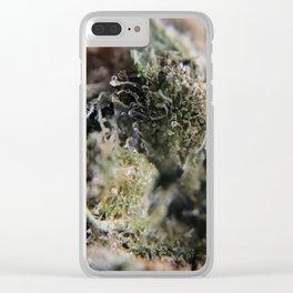 Super Skunk Clear iPhone Case
