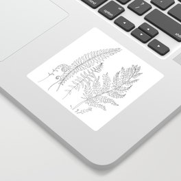 Minimal Line Art Fern Leaves Sticker