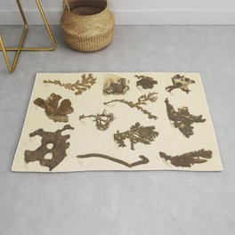 Copper Formations Rug