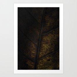 Leaf Six Art Print