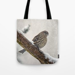 Facing the Storm (House Finch) Tote Bag