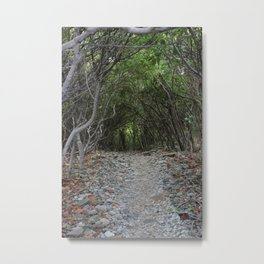 Mystic Tunnel  Metal Print