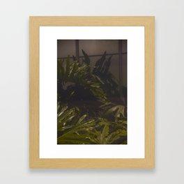 The Greenhouse Kind of Life Framed Art Print