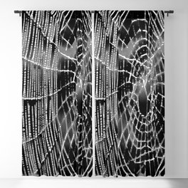 Black and White Spiders Web Blackout Curtain
