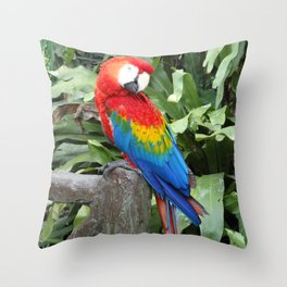 Parrot posing in Malaysia Throw Pillow