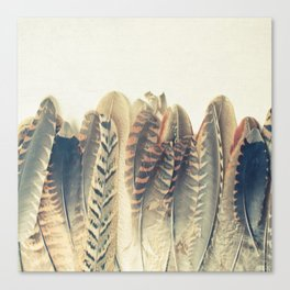 Feather Dip Canvas Print