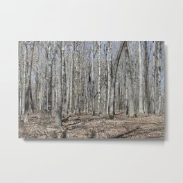 The Lonely Wood Metal Print