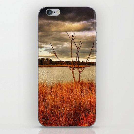 Fall Stalk iPhone Skin