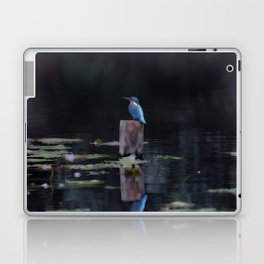 Bird Reflection Laptop & iPad Skin