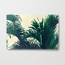 Dreaming of Costa Rica Metal Print