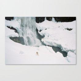 Tumalo Falls -- Fox Canvas Print
