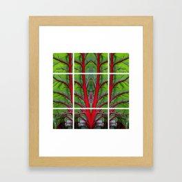 Swiss Chard - Leaf of Life Framed Art Print