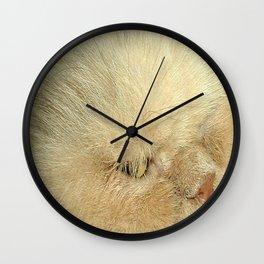 Not So Evil Eye Wall Clock
