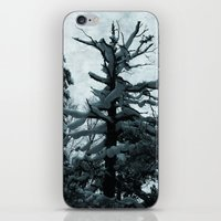 norway iPhone & iPod Skins featuring Norway by Destination Norway