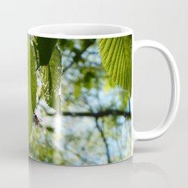 Sunlight Canopy II Coffee Mug