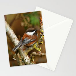 Chestnut-Backed Chickadee in the Cherry Tree Stationery Cards