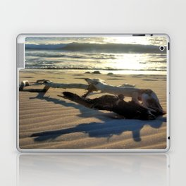 Sunset Driftwood Laptop & iPad Skin