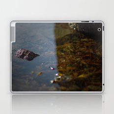 i sea weed Laptop & iPad Skin