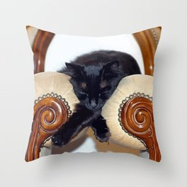 Relaxed Black Cat Sleeping Between Two Chairs  Throw Pillow