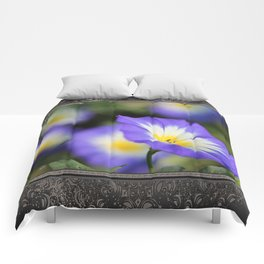 Morning Glory named Blue Ensign Comforters
