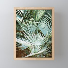 """Travel photography """"Morocco green""""   Botanical design with soft green palm leaves Framed Mini Art Print"""