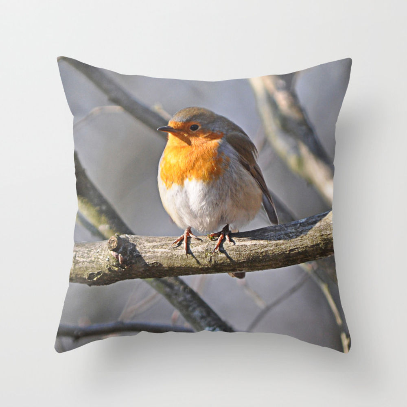 Fluffy Robin Redbreast Throw Pillow by Pirminnohr (PLW915575) photo