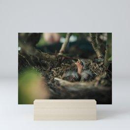 Baby Bird in Spring Mini Art Print