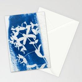 Herbal Sunprint #5 Stationery Cards