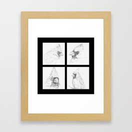 Cardinals 3 Framed Art Print