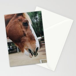 horse by Kelsey Knight Stationery Cards