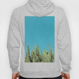 Desert Cactus Reaching for the Blue Sky Hoody