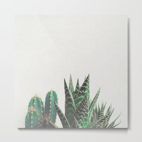 Cactus & Succulents Metal Print