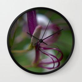 Purple Cleome Wall Clock