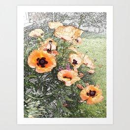 Poppies in the Garden Art Print