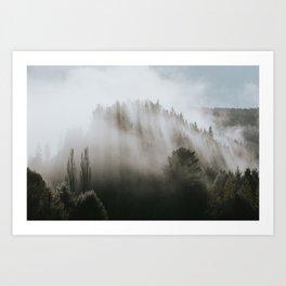 Catlins Mist Art Print